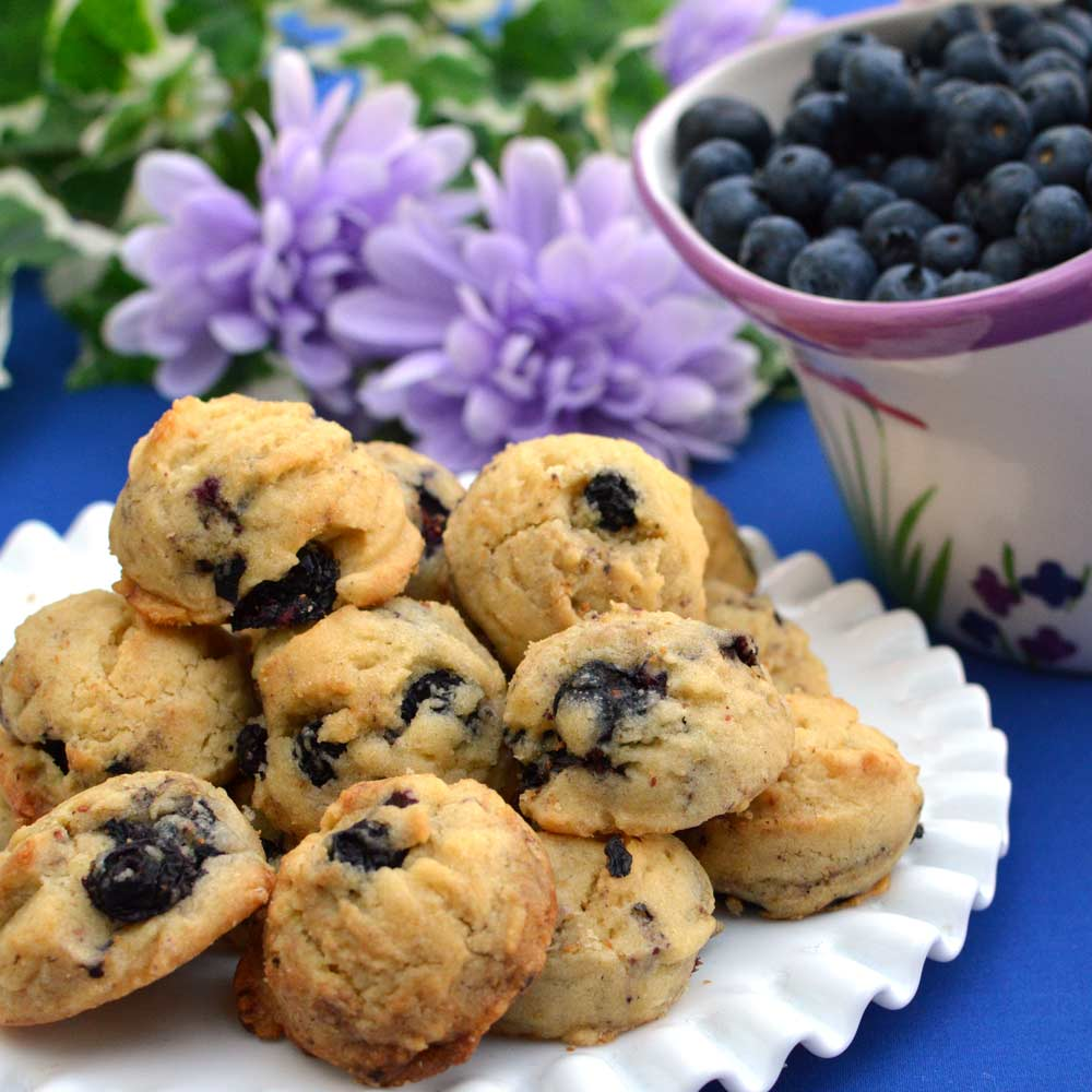 Blueberry Bites